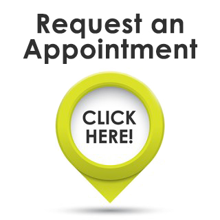 Chiropractic Okemos MI Request an Appointment